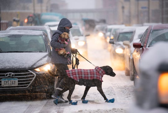 Amber Woller crossed Portland Ave. while on a walk with her dog Sagar and carrying her other dog, Elsie,  Feb. 5, 2019, in Minneapolis. Falling snow slowed pedestrian and vehicular traffic in the downtown area.