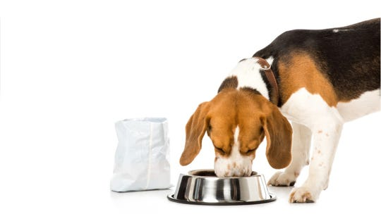 More dog food recalled over potentially toxic vitamin D levels, Hill's Pet Nutrition says