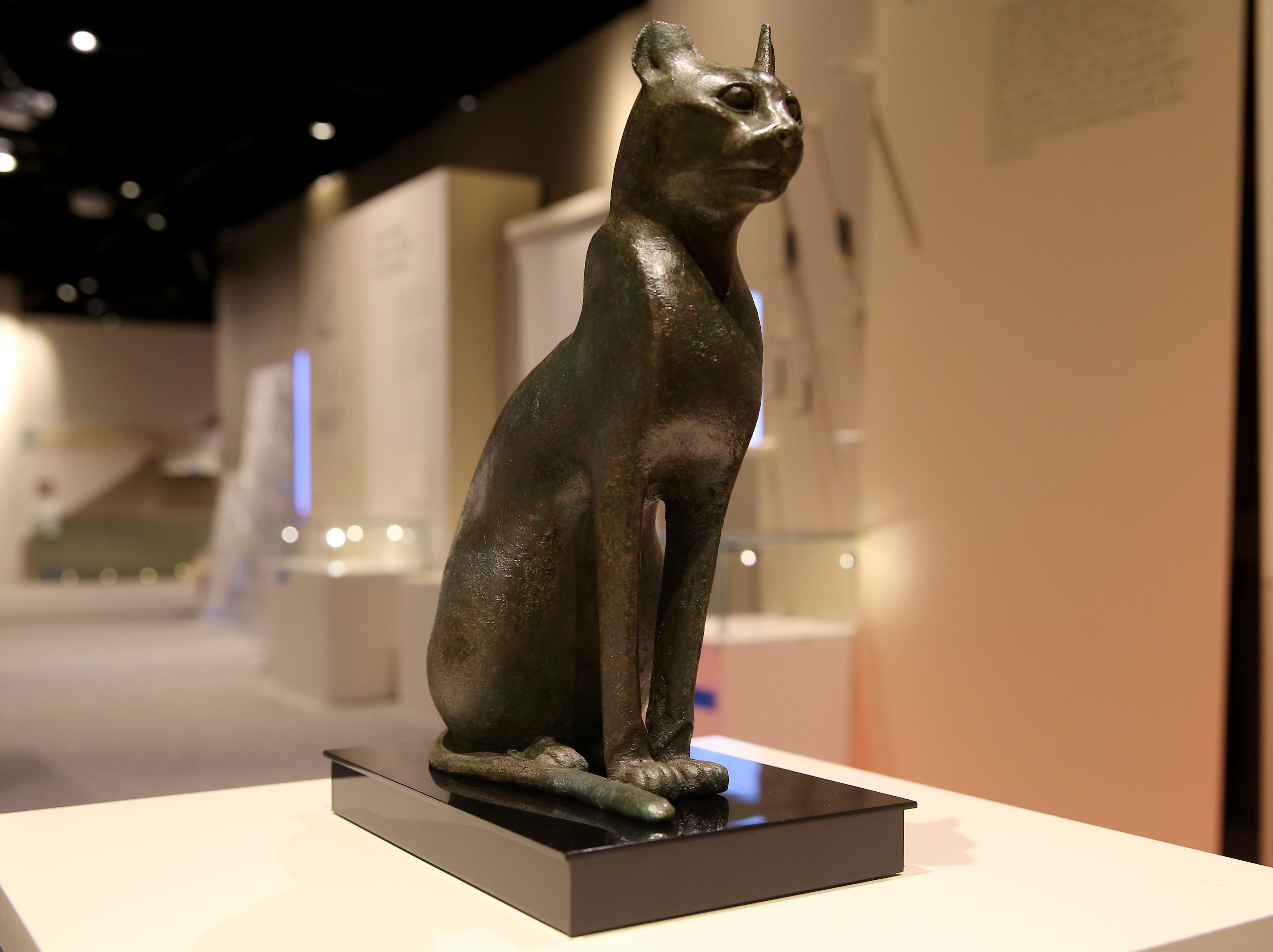A bronze cat, often buried as a sacred objects in tombs, is uncrated for display, Thursday, Feb. 7, 2019, at Cincinnati Museum Center in Cincinnati. It is about 2,500 years old.