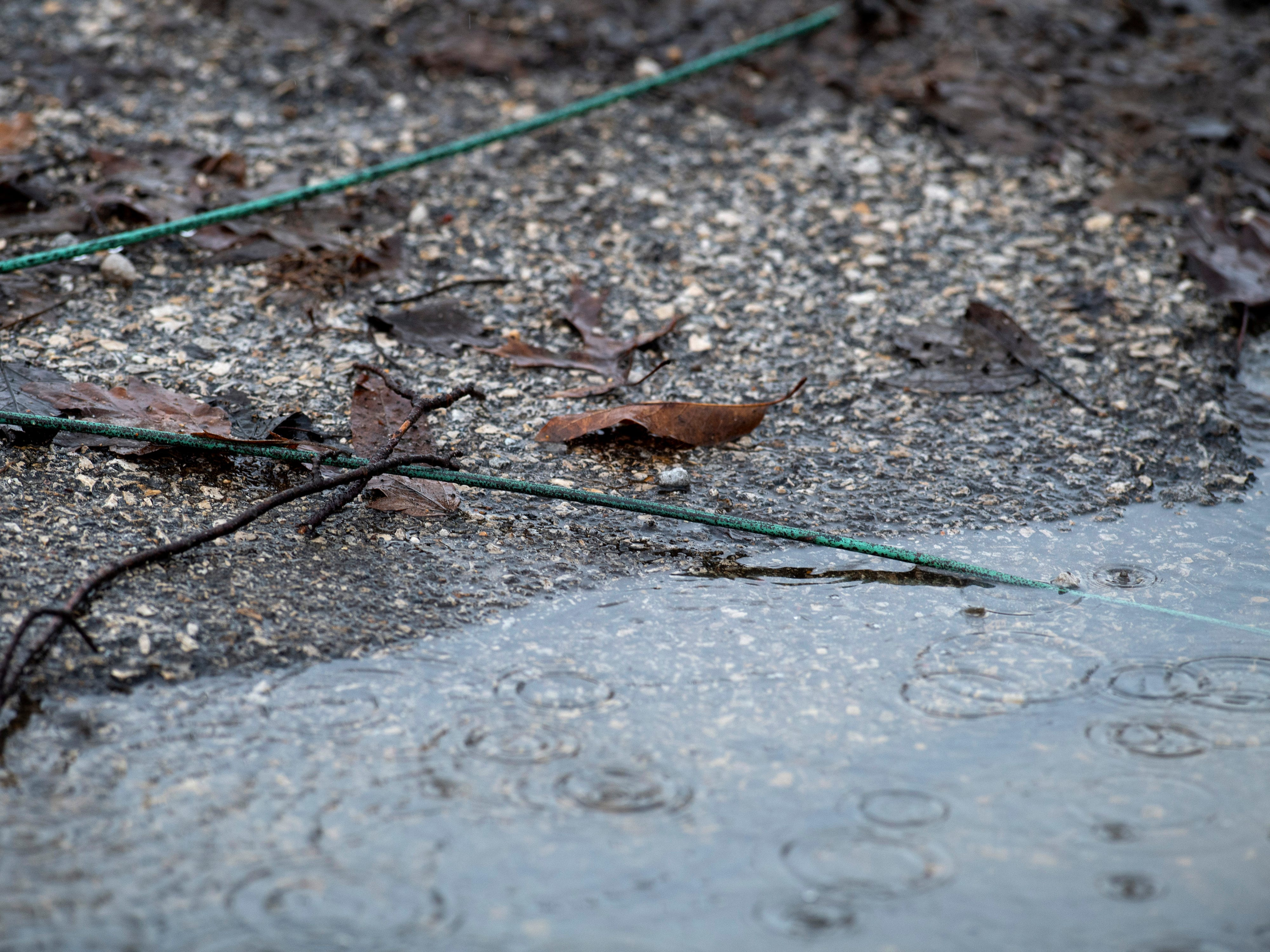 Downed live power lines rest in a puddle in Oakland City, Ind., Thursday afternoon. An earlier storm created quite a bit of damage to homes, power lines and trees on the west side of the town.