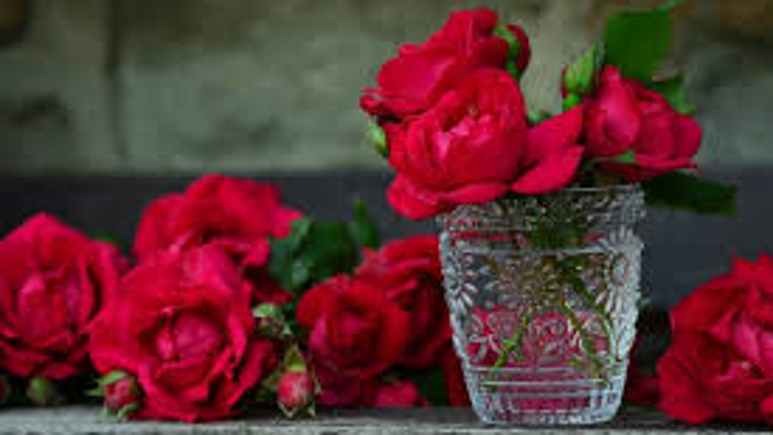 Valentines Day At Trader Rose >> Valentine S Day Flowers Deals On Roses Abound At Grocery Stores