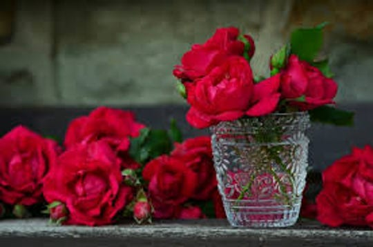 Roses are the all-time classic flower for Valentine's Day