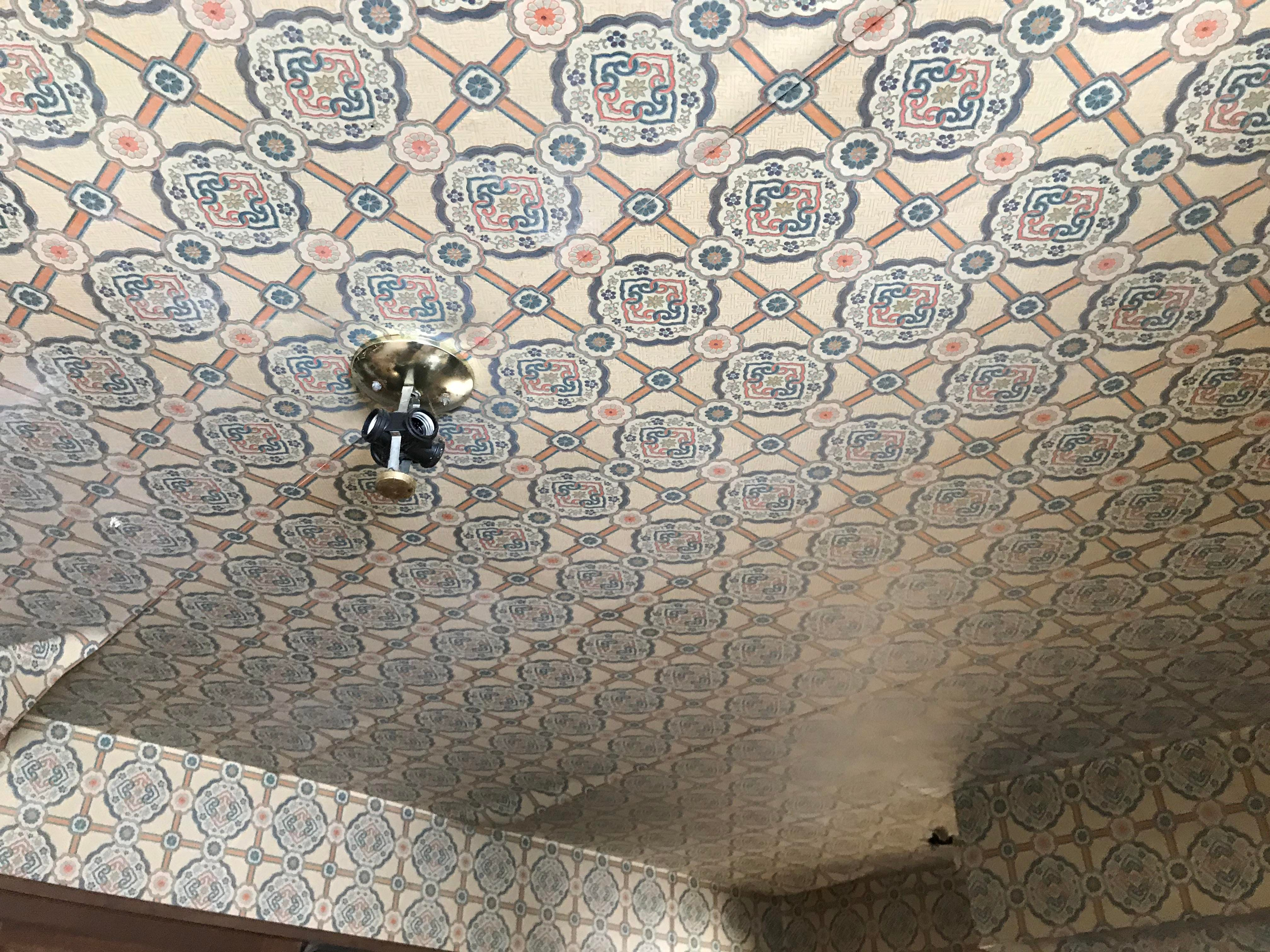 "The kitchen ceiling in an abandoned home on Billwood Highway. Often referred to as ""the Addams Family house,"" new owner Matt Jankoviak aims to remodel it, and then open a canoe and kayaking livery at the property."