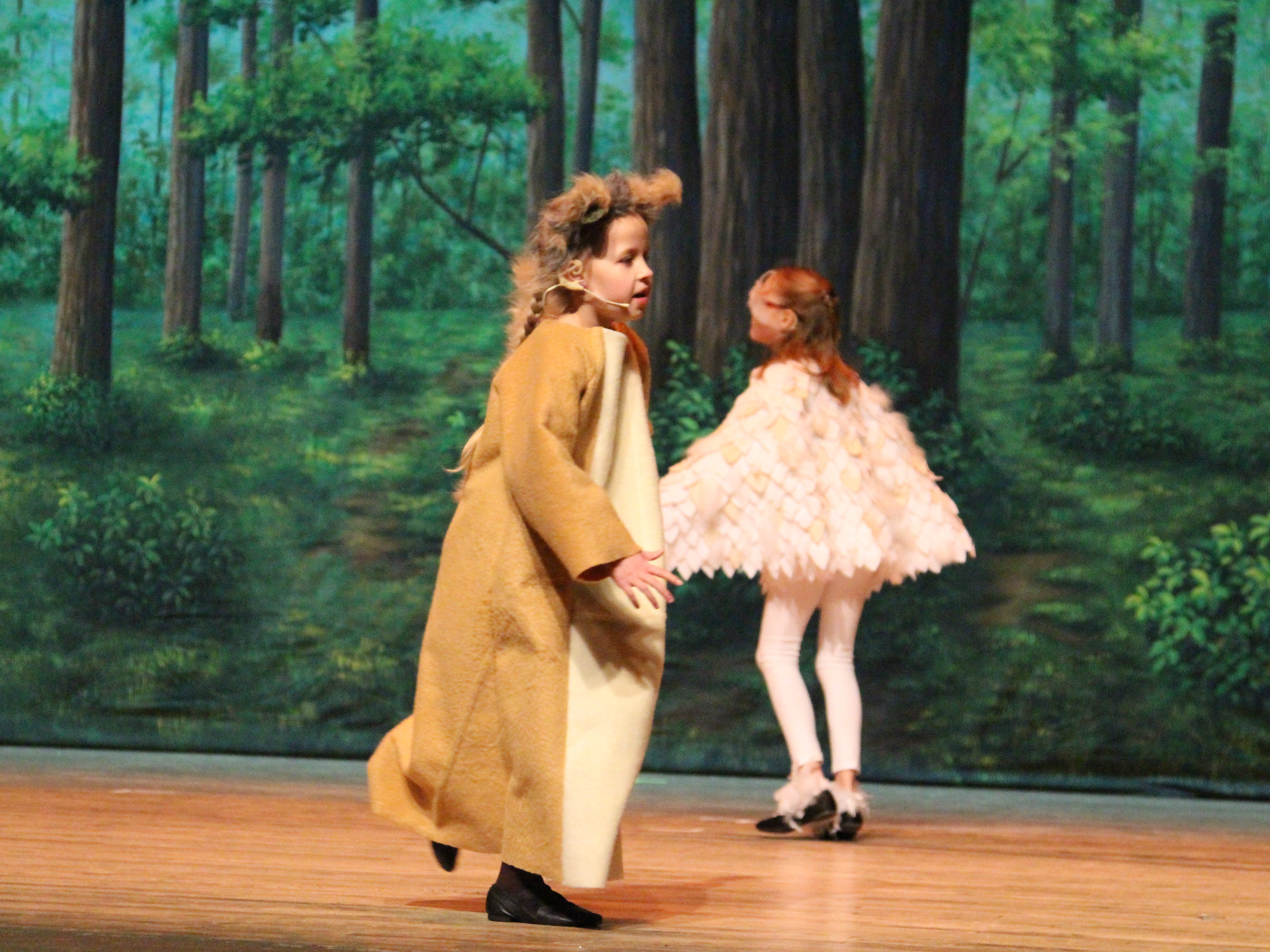 """Wild animals frolic through the forest in the Marion Palace Theatre's production of """"The Tale of Snow White,"""" an adaptation of the classic fairy tale. The production starts at 7:30 p.m. Friday and Saturday, Feb. 8 and 9 and at  2 p.m. Sunday, Feb. 10."""