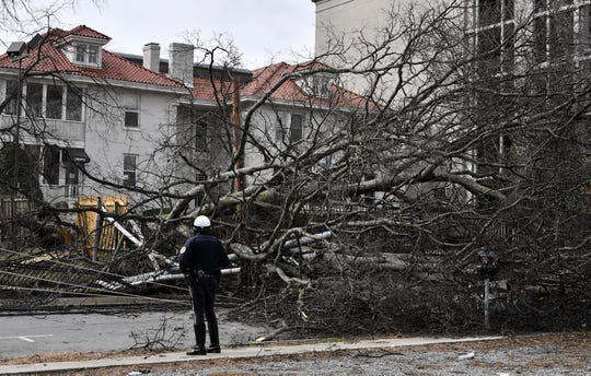 A Metro Police Nashville Police officer surveys the tree that fell at 19th Ave. South and Chet Atkins Place after overnight flooding hit Middle Tennessee Thursday, Feb. 7, 2019, in Nashville, Tenn.