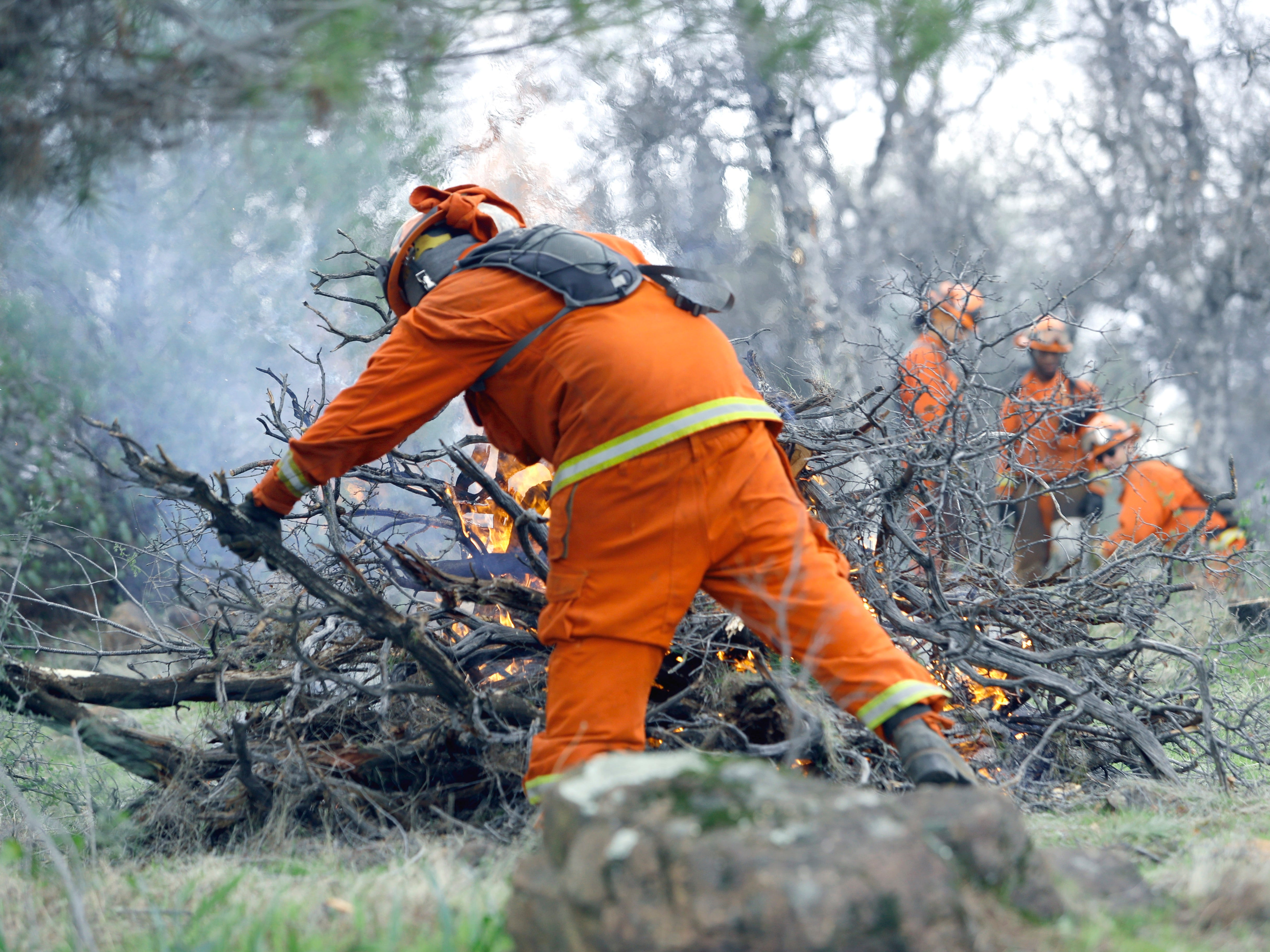 A crew from the Sugar Pine Conservation Camp burns brush and tree limbs that were cleared from city-owned open space between El Capitan Drive and Regent Avenue in west Redding on Feb. 6, 2019.
