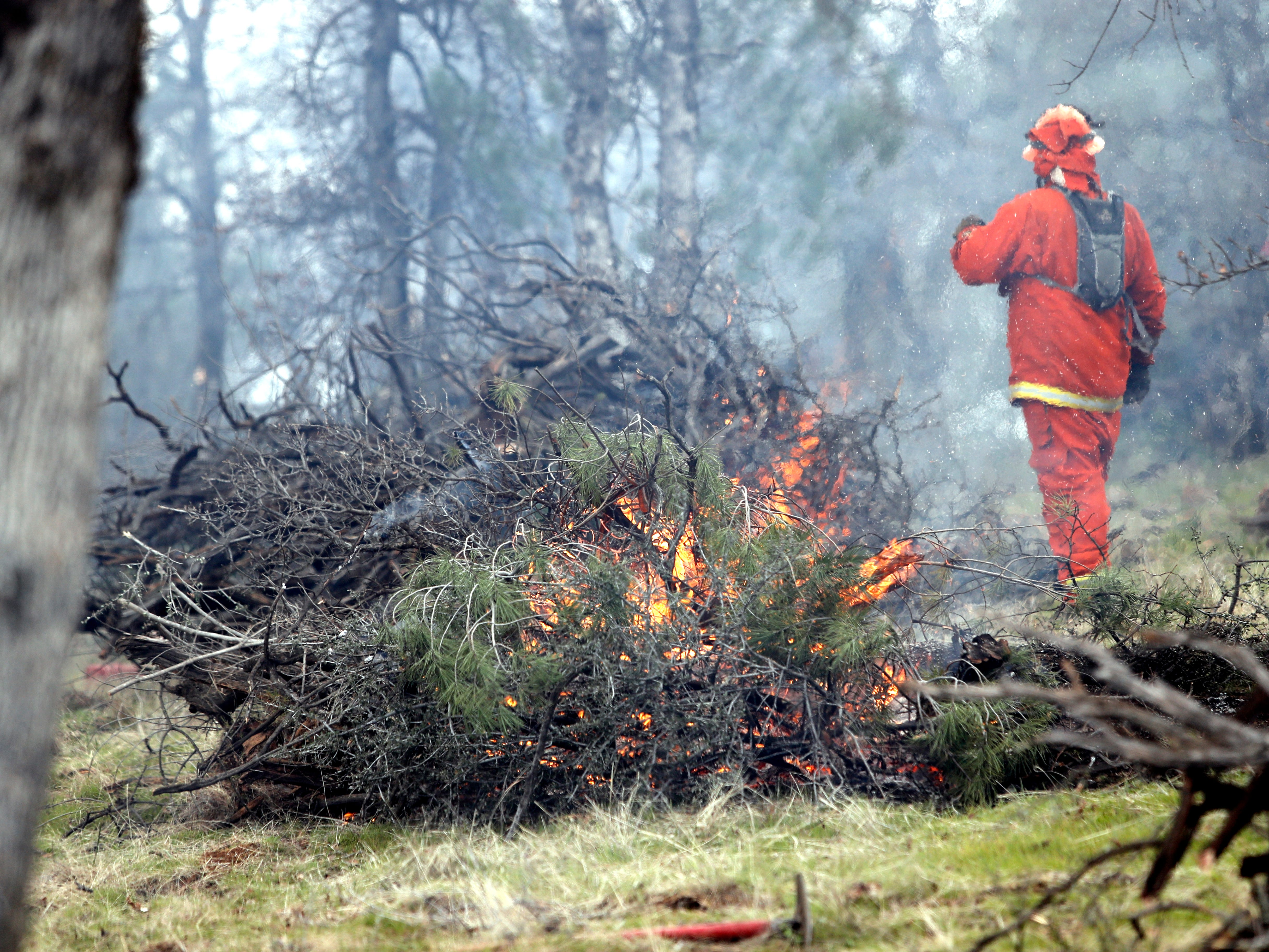 An inmate from the Sugar Pine Conservation Camp burns brush and tree limbs that were cleared from city-owned open space between El Capitan Drive and Regent Avenue in west Redding on Feb. 6, 2019.