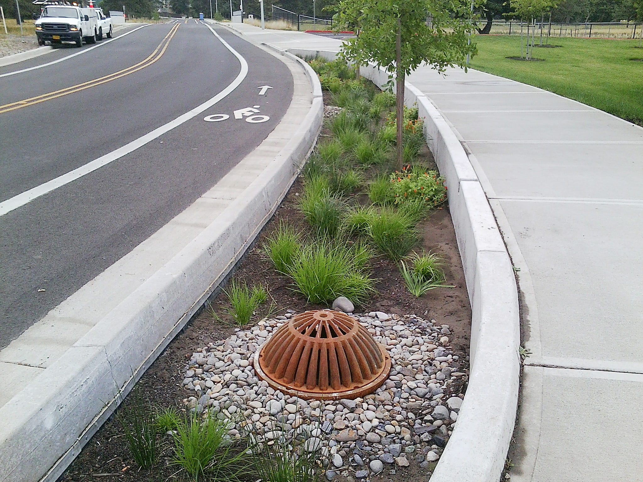Stormwater filtration planters at Waln Drive are examples of the type of on-site stormwater retention projects that would be required of developers in smaller cities under the new permit.