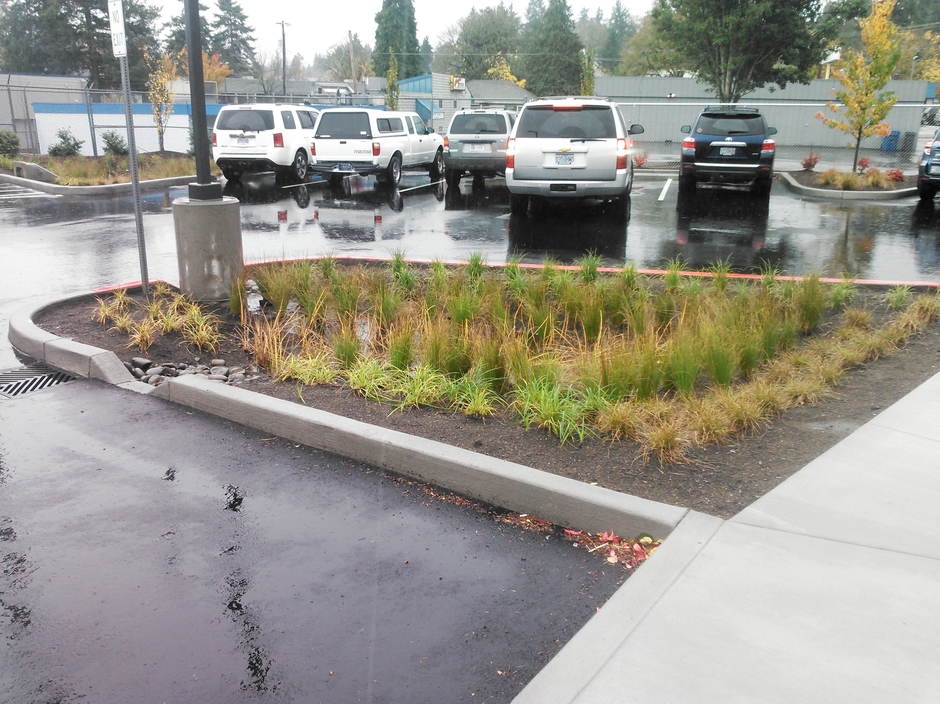 The rain garden infiltration system at the Starbucks on Commercial St SE is an example of the type of on-site stormwater retention projects that would be required of developers in smaller cities under the new permit.