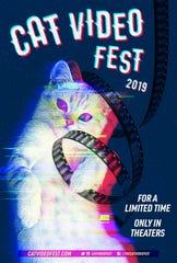 CatVideoFest poster
