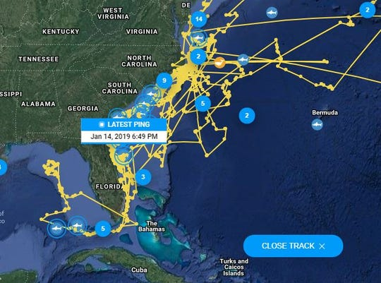 Katharine the white shark loves Florida's coast. She easily is OCEARCH's most popular shark.