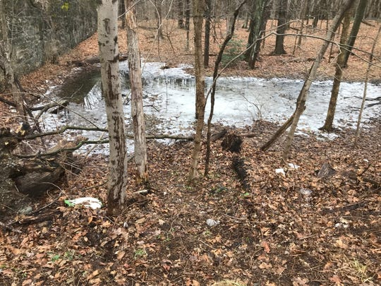 The area in which a woman's body was found bound inside of a suitcase along Glenville Road in the Glenville section of Greenwich, Conn. the morning of Tuesday, Feb. 5, 2019. According to police, a town worker found the bound body of a female between the ages of 18 and 30 just off of Glenville Road near the intersection with Stillman Lane.