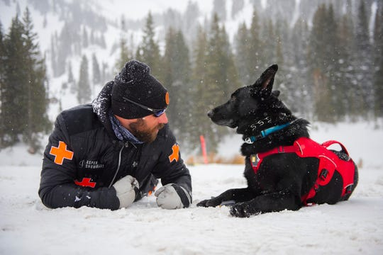 An avalanche rescue dog and its handler  communicate during obedience training.