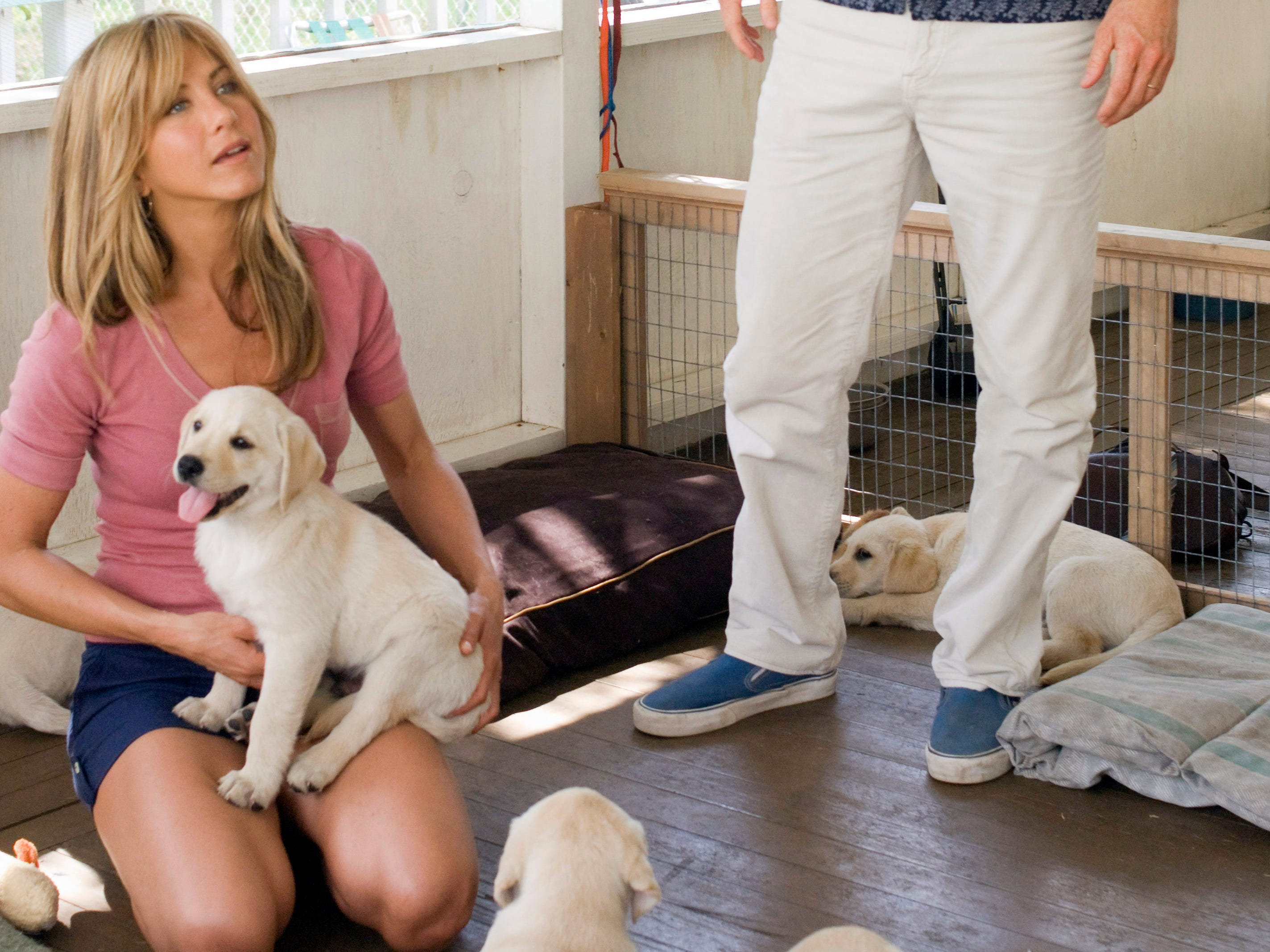 """In 2008, Aniston starred opposite Owen Wilson as the owners of rambunctious yellow Labrador retriever in the doggie dramedy """"Marley & Me."""""""