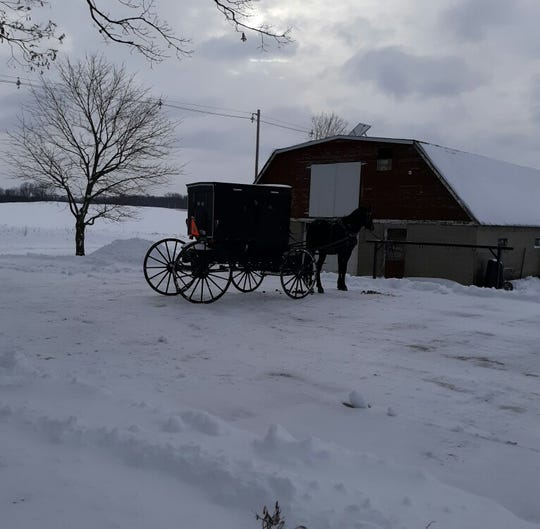 Getting around in buggies on the snow and ice with cold temperatures? Not for the faint of heart