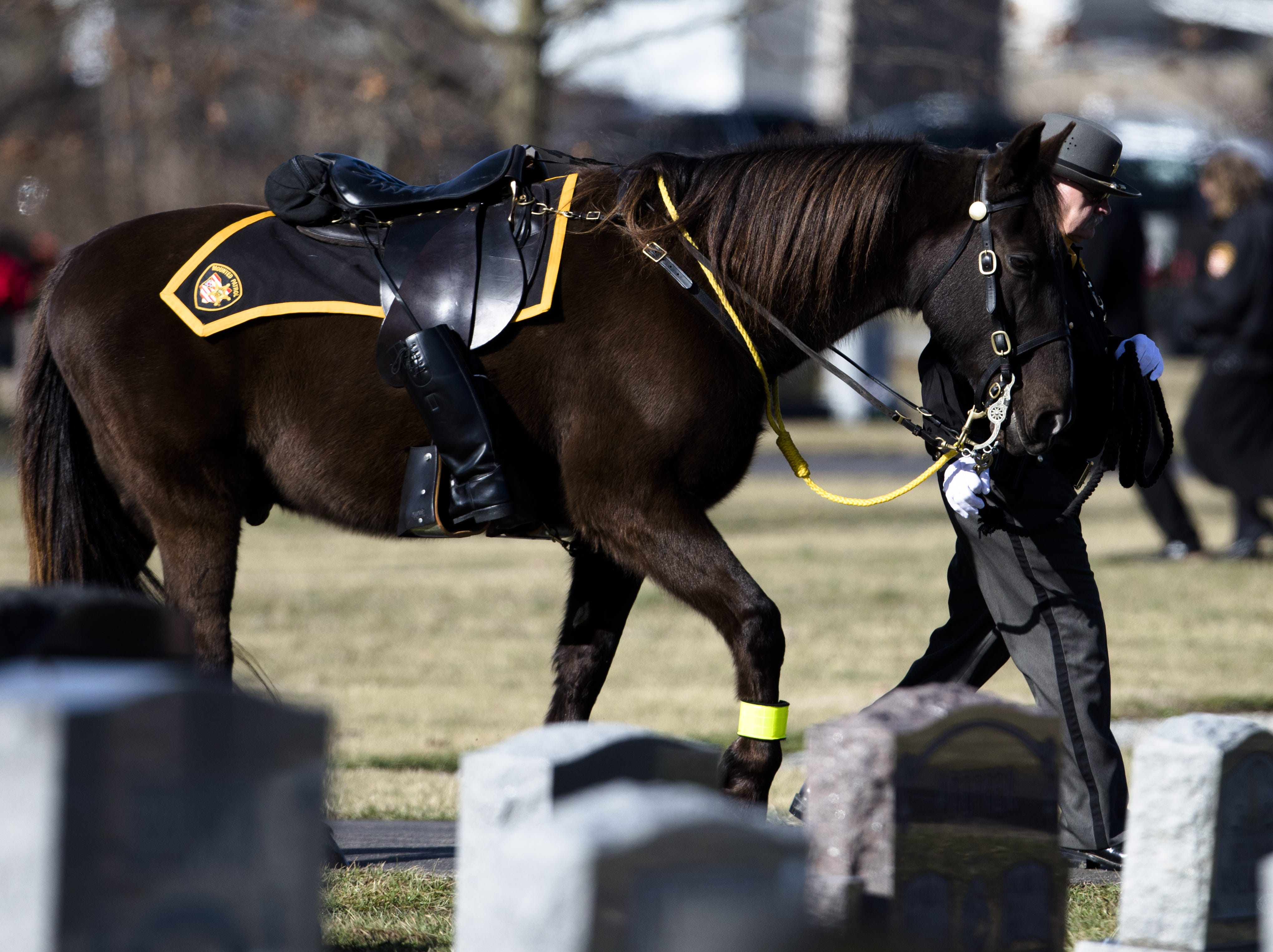 The riderless horse is led away during the burial service of Detective Bill Brewer, a 20-year veteran of the Clermont County Sheriff's Office, on Friday, Feb. 8, 2019, at Pierce Township Cemetery in Cincinnati. Brewer, 42, of Pierce Township, died in the line of duty. He was shot Feb. 2 during a standoff. Deputy Brewer is survived by a wife and 5-year-old son.