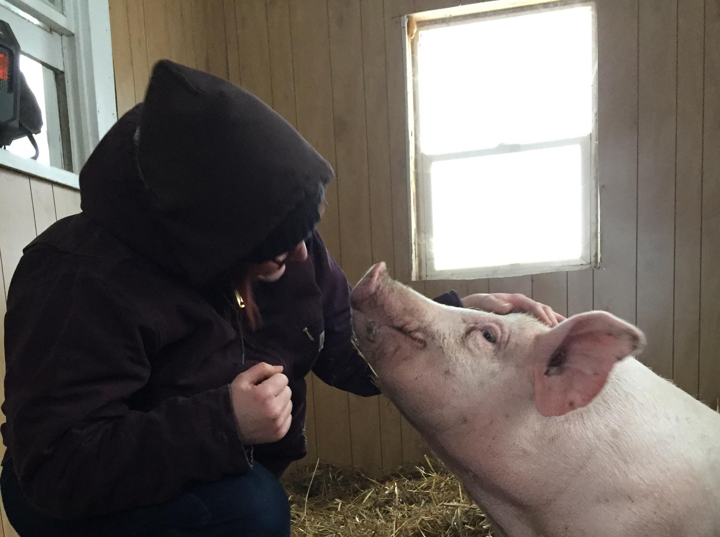 George visits with his rescuer Hailey Dixon at the Iowa Farm Sanctuary.