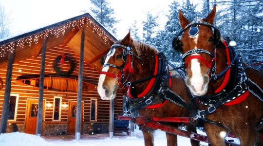Thunder Bay Resort, located near the tip of the Lower Peninsula in Hillman, will take you over the river and through the woods on an elk-viewing adventure.
