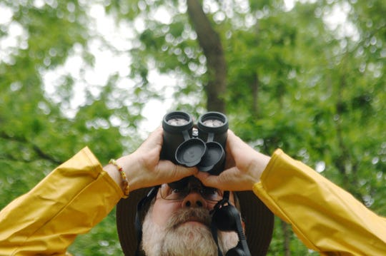 Tim Griffith looks through binoculars  as he identifies different varieties of birds in the woods at Eagle Slough on Thursday morning. Griffith, Steve Heeger and Don Batema identified 63 different types of birds during their two and a half hour walk through the woods. The three gentleman used sight and sound to identify the birds.