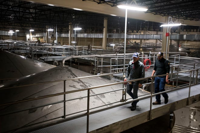 General Manager Gene Bocis, left, and utilities process engineer Tyler Gohlberg take a tour past the fermentors on Wednesday, Feb. 6, 2019, at the Anheuser Busch brewery in Fort Collins, Colo.