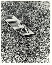 A Florida girl stranded in water hyacinth in  this 1970s photo from the U.S. Army Corps of Engineers' archive