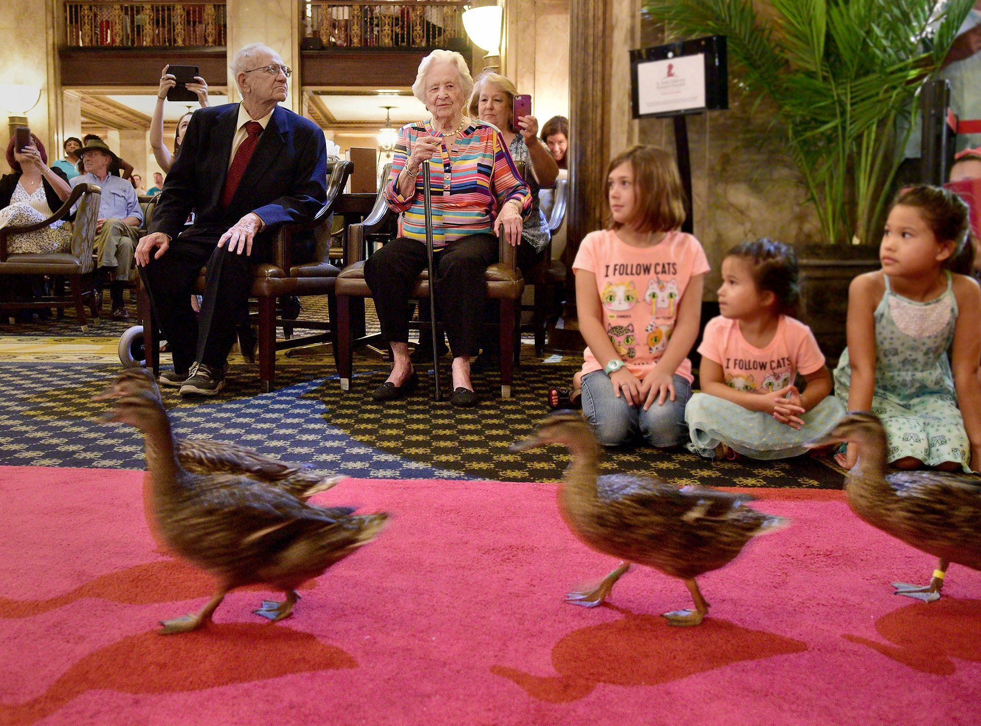 """Minnie Opal Hill, center, watches as the famous Peabody Ducks march toward the lobby's fountain July 28, 2018. Hill celebrated her 100th birthday at The Peabody Hotel by being named honorary duckmaster. Hill had visited the historic hotel on numerous occasions, but today was the first time she witnessed the famous """"March of the Peabody Ducks."""""""