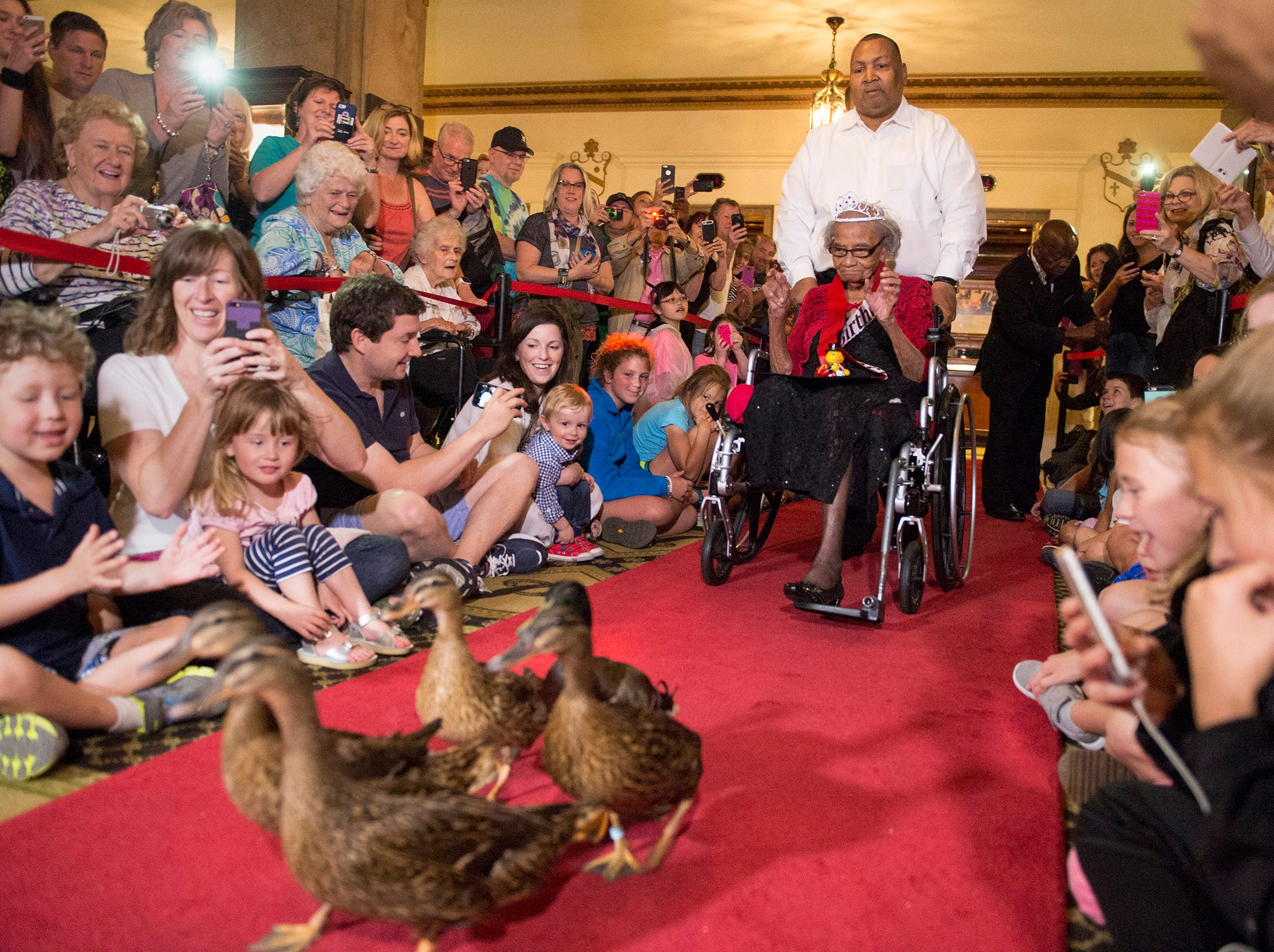 Pushed by her nephew Michael Davis, Dorothy Davis celebrates her 105th birthday by serving as honorary duckmaster at the Peabody Hotel on April 29, 2016.