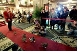 The Peabody Hotel has a reputation for luxury and, of course, duck marches.