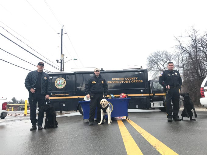 The trio of accelerant detection dogs, along with their handlers, that will be used to search for clues at the site of the Marcal fire. From left to right, Titan, Pilot and Bubba.