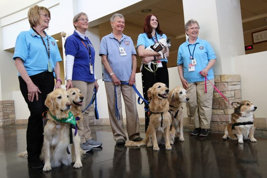 Pet Therapy volunteers, from left to right, Helen Taylor, Sarah Kaynor, Marla Sipes, Melissa Salyers and Becky Houghton pose with their dogs for a photo Friday in the lobby of San Juan Regional Medical Center.