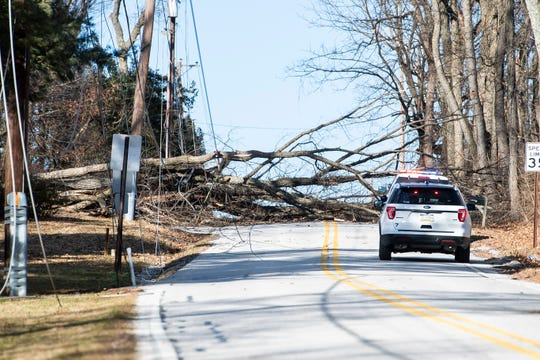A tree brought down power lines in the 1400 block of Beck Mill Road along the West Manheim and Penn Township border line on Friday, February 8, 2019.