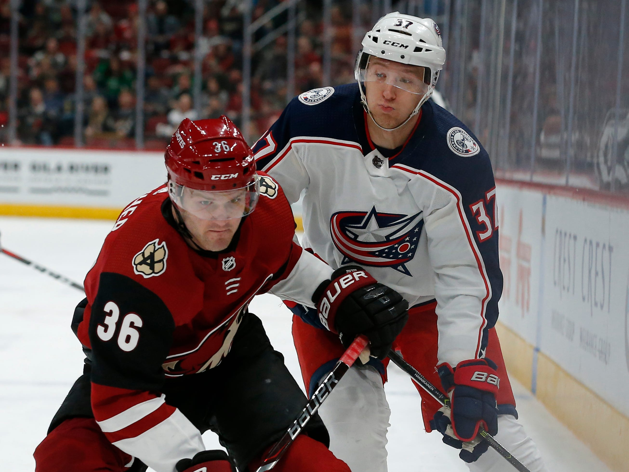 Arizona Coyotes right wing Christian Fischer (36) shields Columbus Blue Jackets left wing Markus Hannikainen from the puck in the first period during an NHL hockey game, Thursday, Feb. 7, 2019, in Glendale, Ariz.