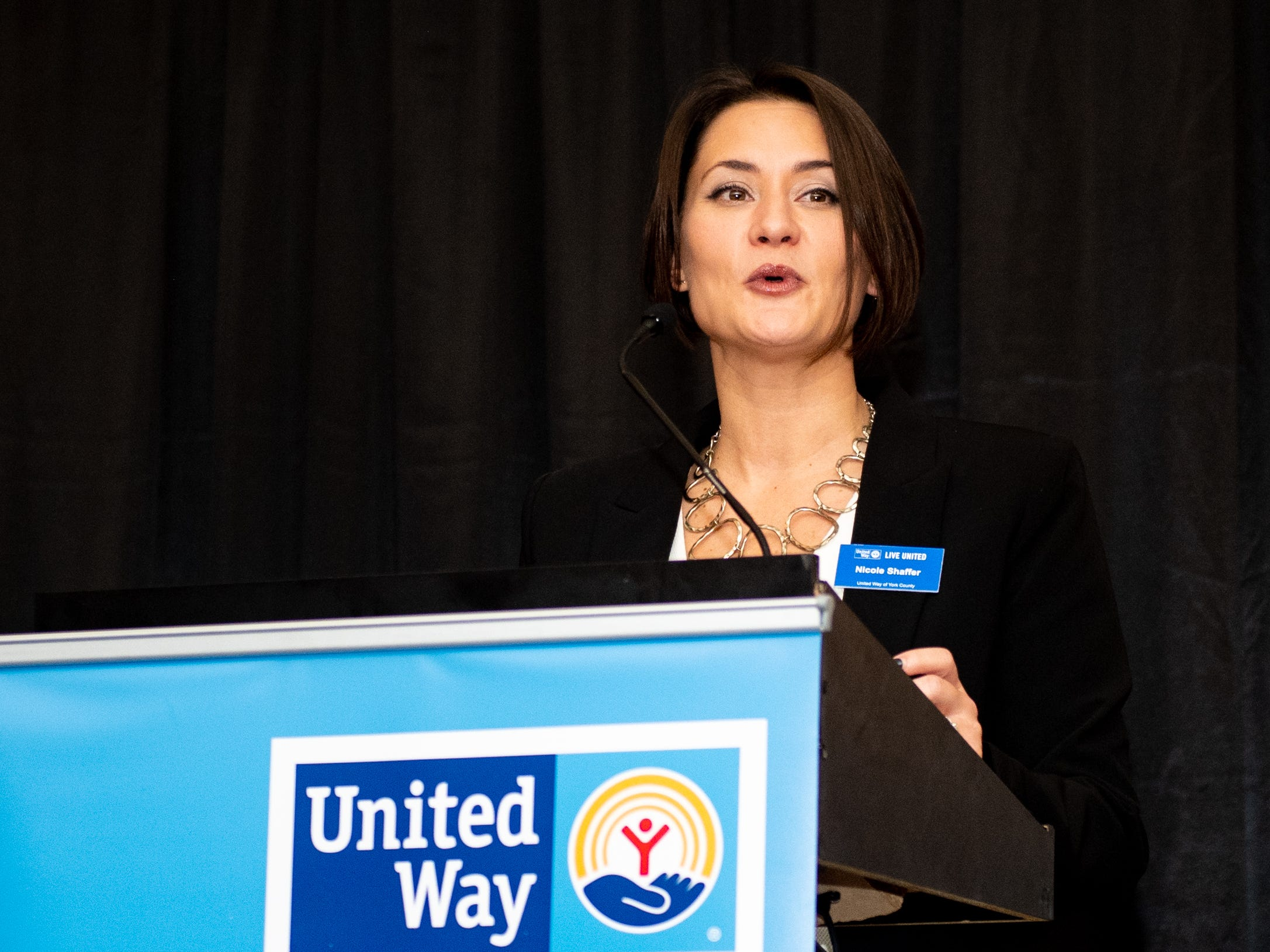 One by one, Nicole Schaffer of the United Way of York County announces the businesses and organizations that have won an award, February 7, 2019.