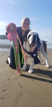 Mikala Seymour won the title of Best Junior Handler with some very tough West Coast competition at the 2018 Saint Bernard Club of America National in Lincoln City, Oregon.