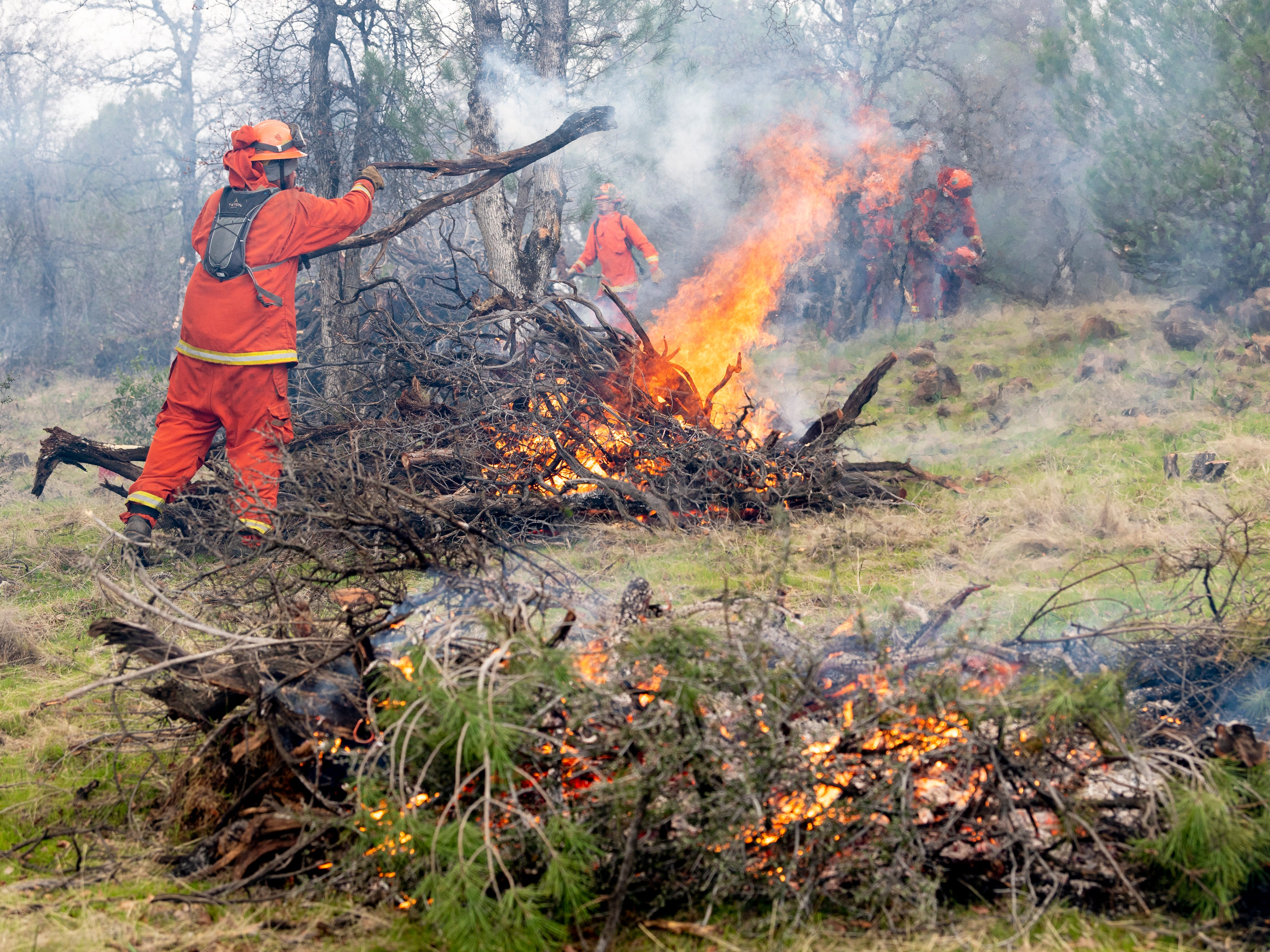 Sugar Pine Conservation Camp inmates collect and burn brush in a greenbelt located in between residential areas in west Redding on Wednesday, Feb. 6, 2019.