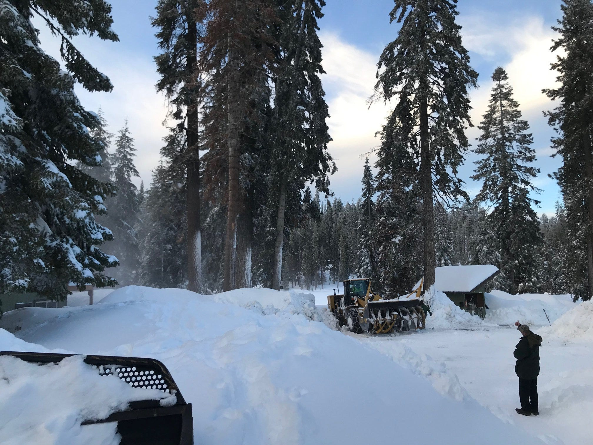 Whiteout conditions in California close Sequoia and Kings Canyon national parks