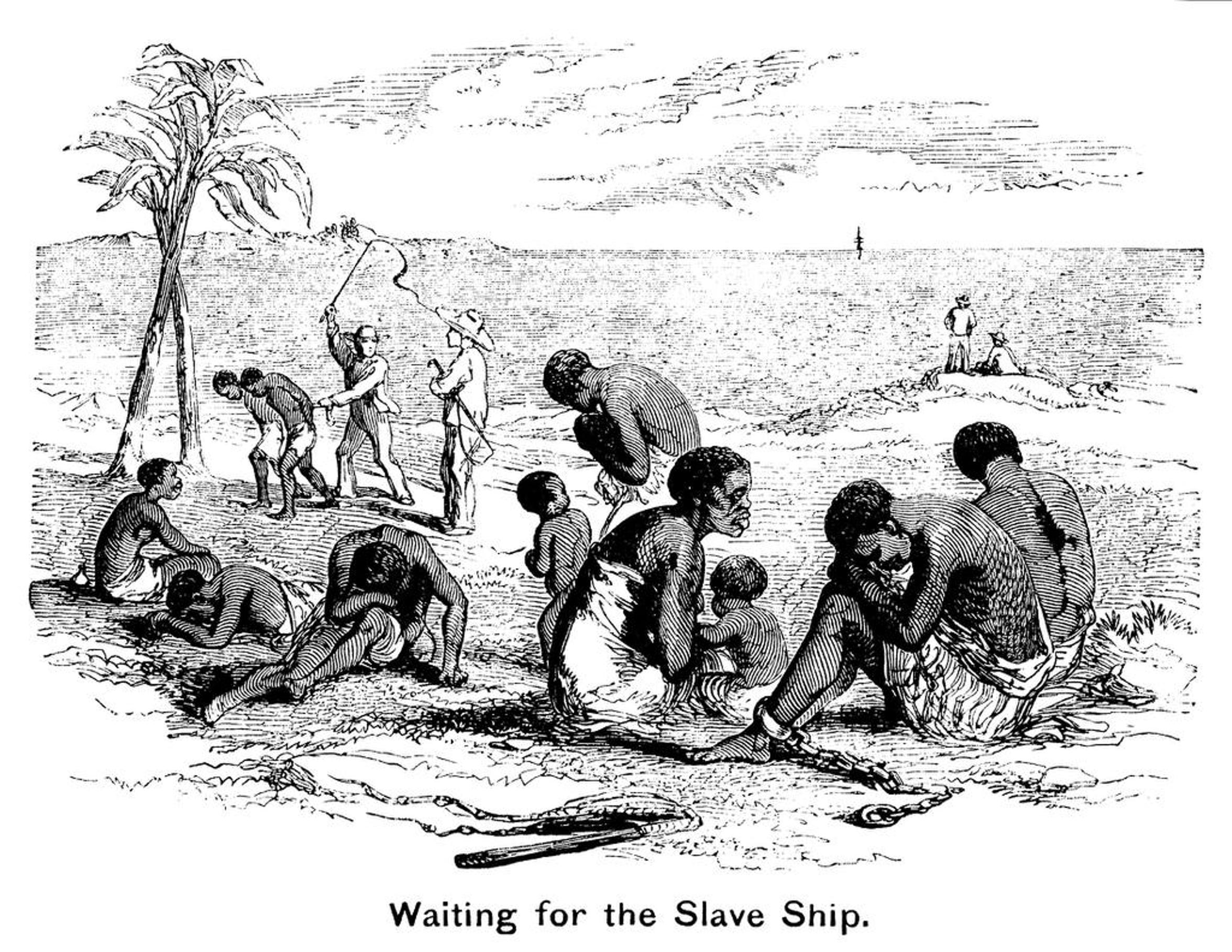 A drawing from a 19th-century religious tract shows captured Africans herded onto the beach to wait for the ships that would carry them across the ocean and into slavery.