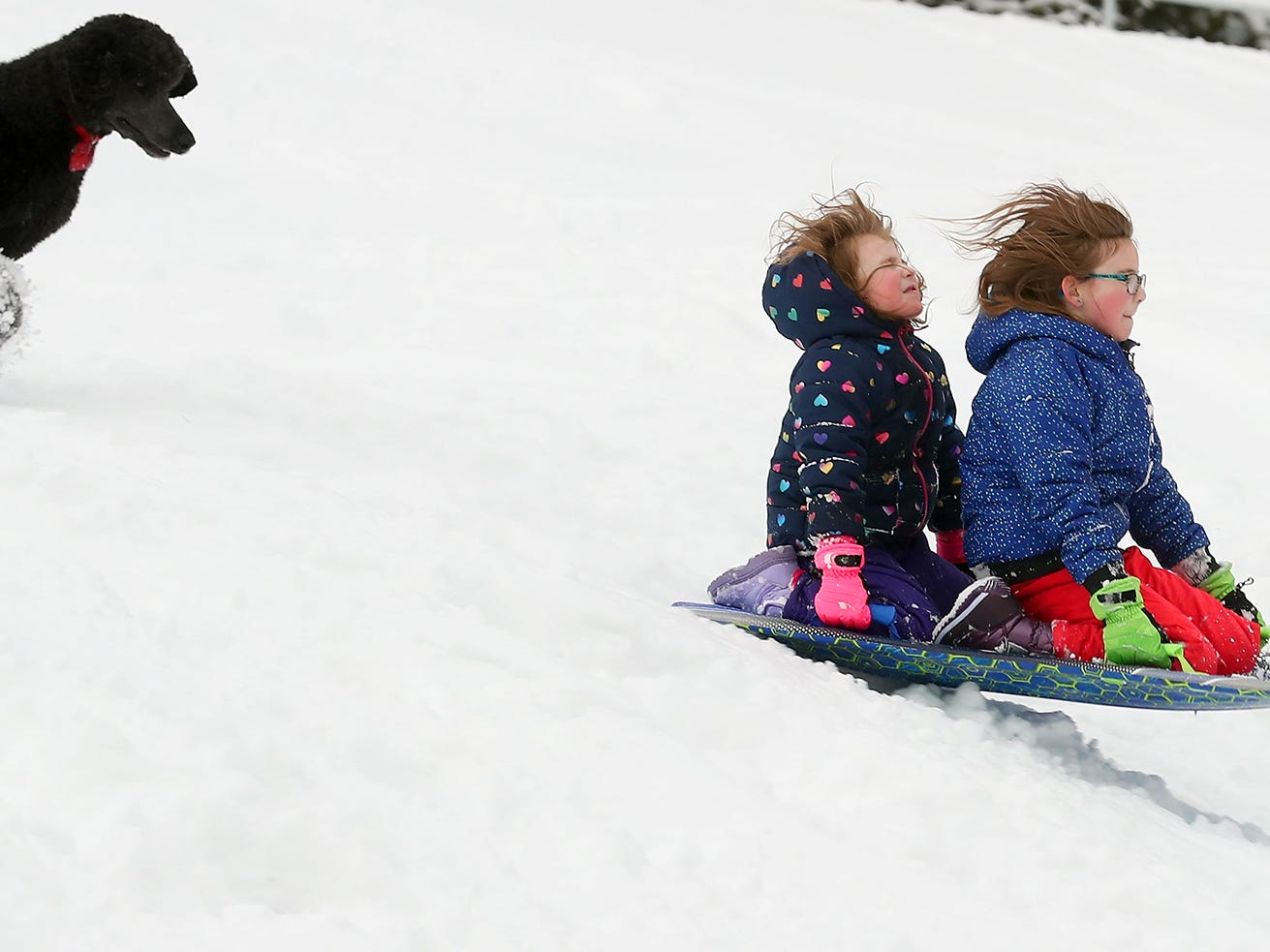 Charlotte O'Hara, 5, and sister Eleanor, 7, sled down the hill followed closely behind by their dog Teddy at Silver Ridge Elementary School in Silverdale on on Saturday, February 9, 2019.