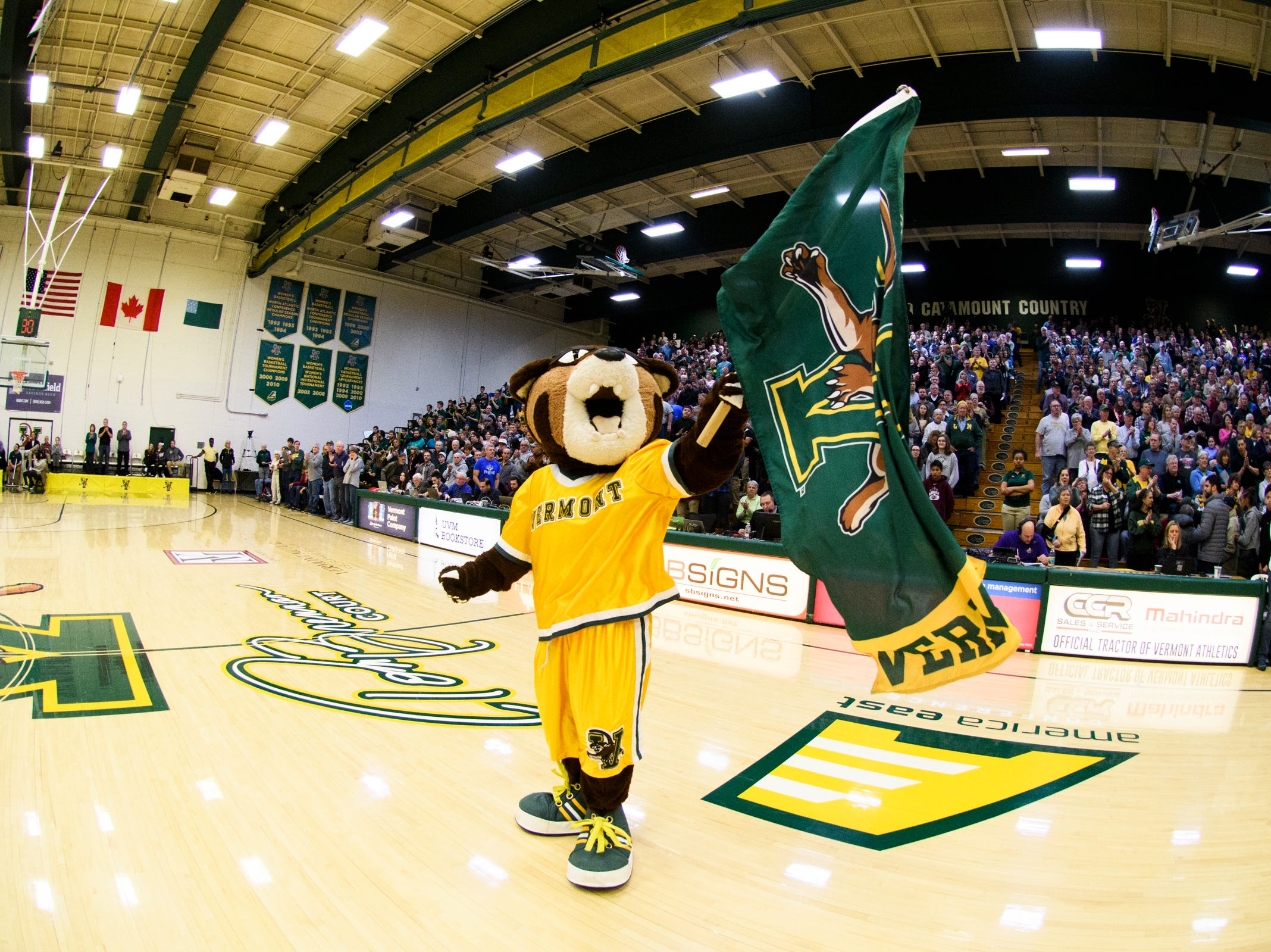 Rally, the Catamounts mascot cheers for the team during the men's basketball game between the Albany Great Danes and the Vermont Catamounts at Patrick Gym on Saturday February 9, 2019 in Burlington, Vermont.