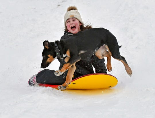 Kylie Silvia, 7, of Sedro-Woolley slides down a hill Saturday, Feb. 9, 2019, at the Northern State Recreation Area while being chased by Atlas, one of the two family dogs. The National Weather Service is predicting more snow throughout the week in Northwest Washington.