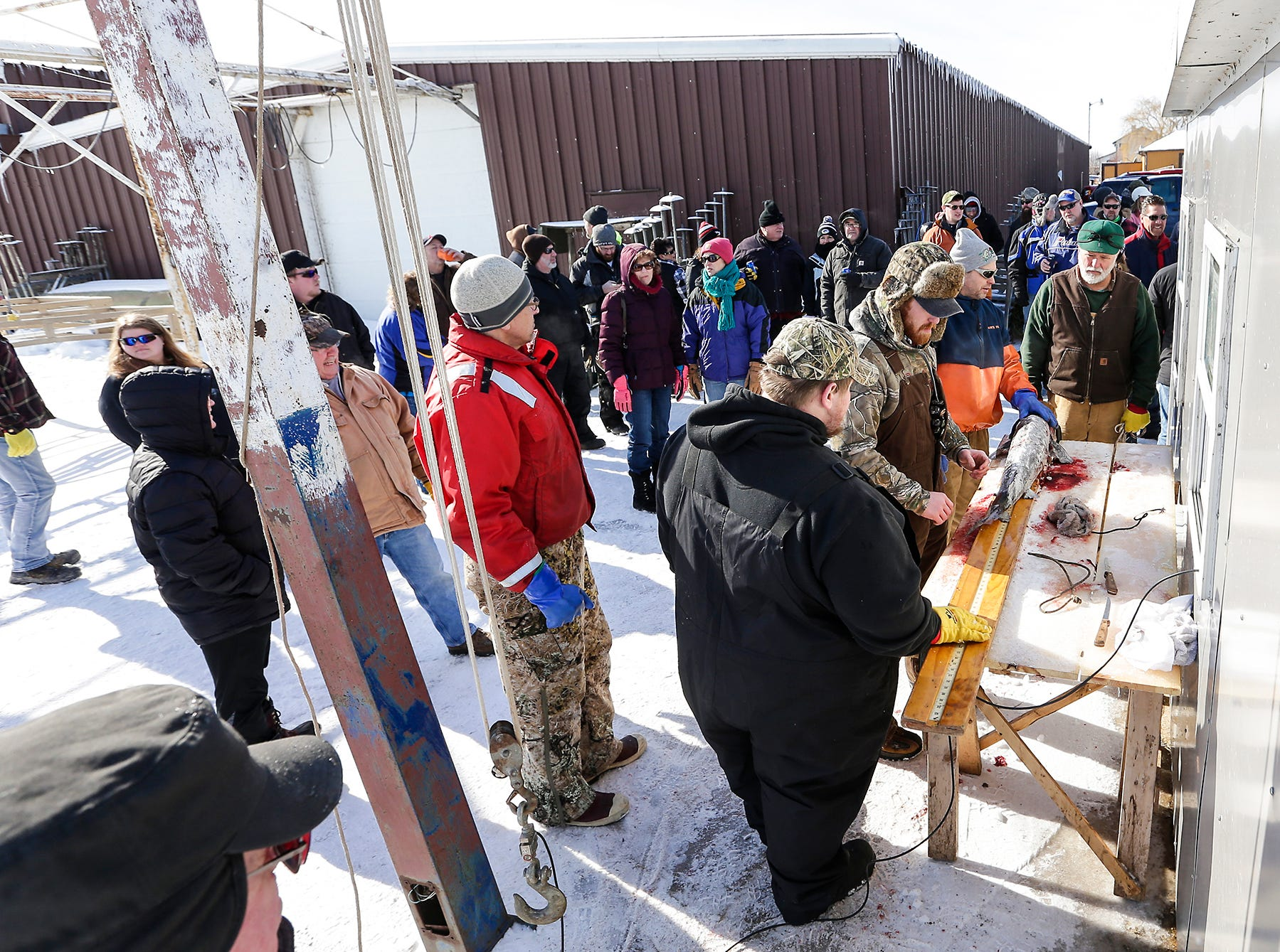 A small crowd gathers Saturday, February 9, 2019 at Wendt's on the Lake between Fond du Lac and Oshkosh as DNR officials look over a sturgeon that was speared on opening day of sturgeon spearing season. Sturgeon spearing season runs from February 9, 2019 through February 24, 2019 on Lake Winnebago or until any