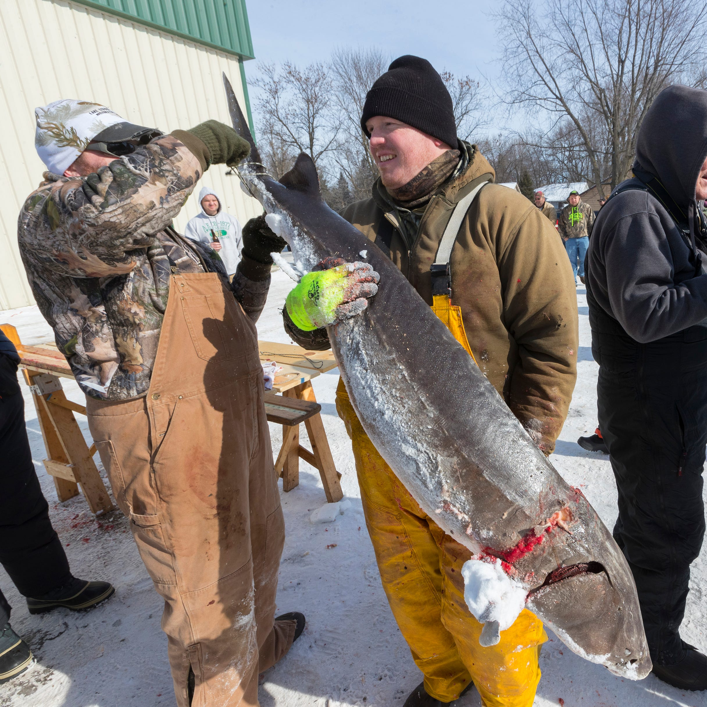Sturgeon-spearing season ends for upriver lakes as DNR cap reached