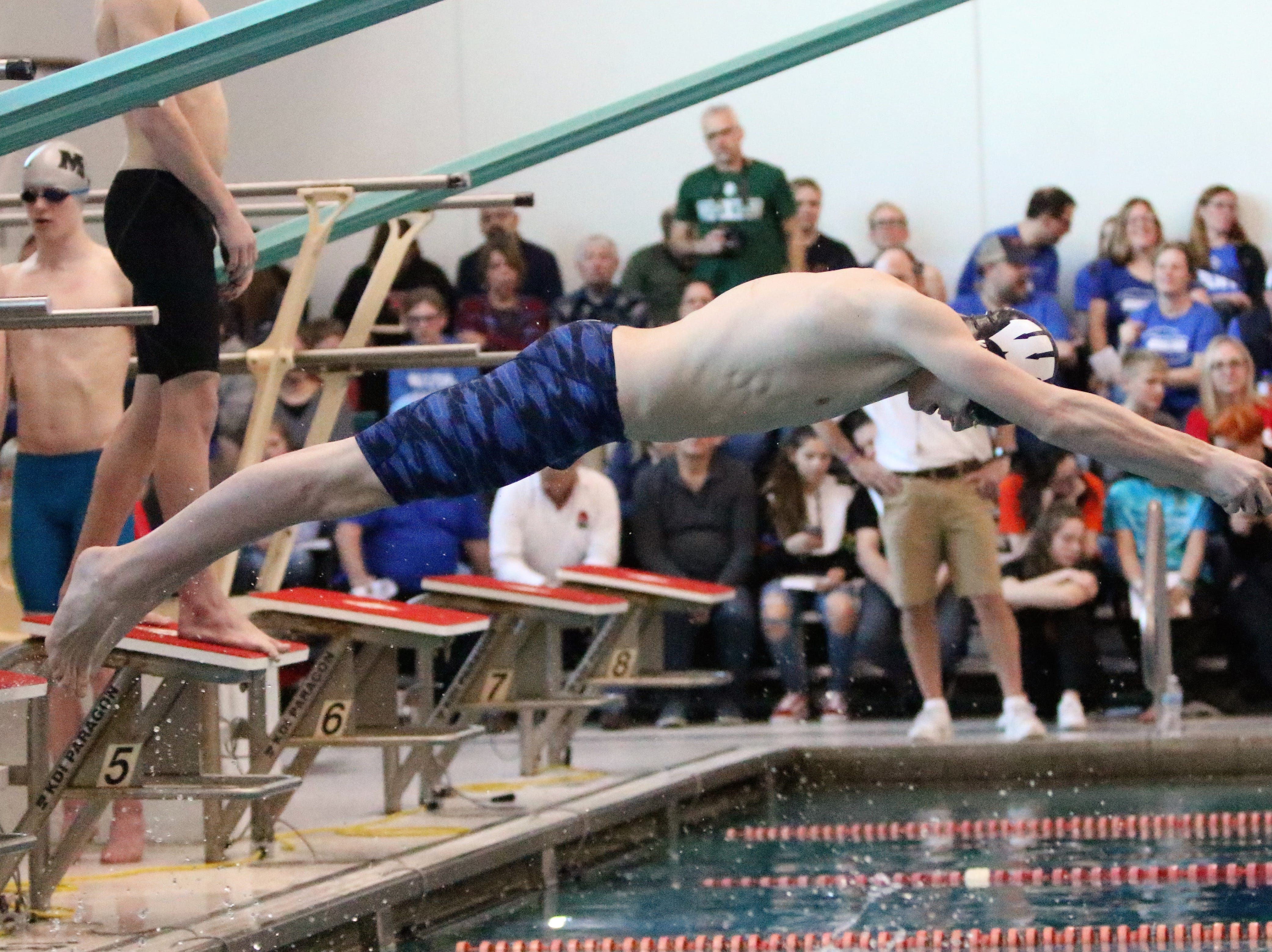 A Wauwatosa East/West swimmer dives into the pool during a relay at the WIAA sectional meet  at Homestead High School on Feb. 9, 2019.