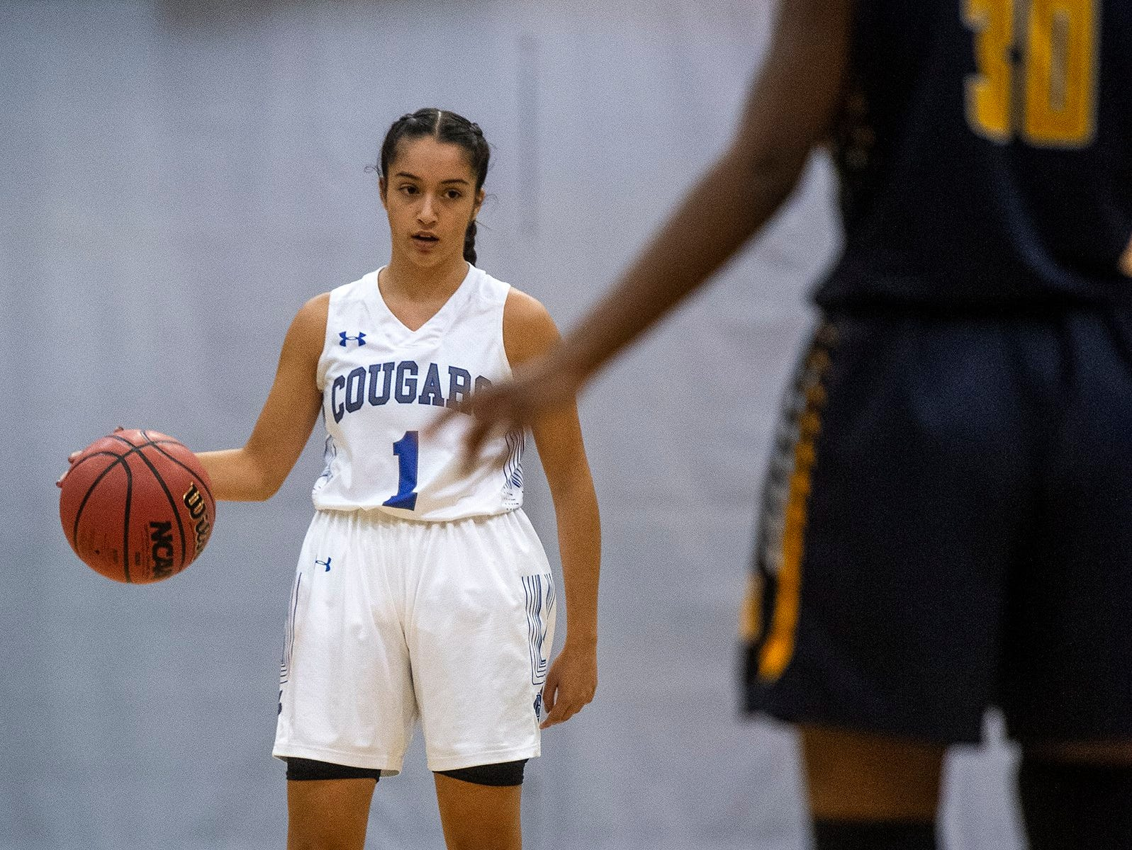 Barron Collier's Sabrina Fakhoury brings the ball down court during the Class 7A-District 12 Championship against Naples High School in Naples, Fla., on Friday, Feb. 8, 2019.