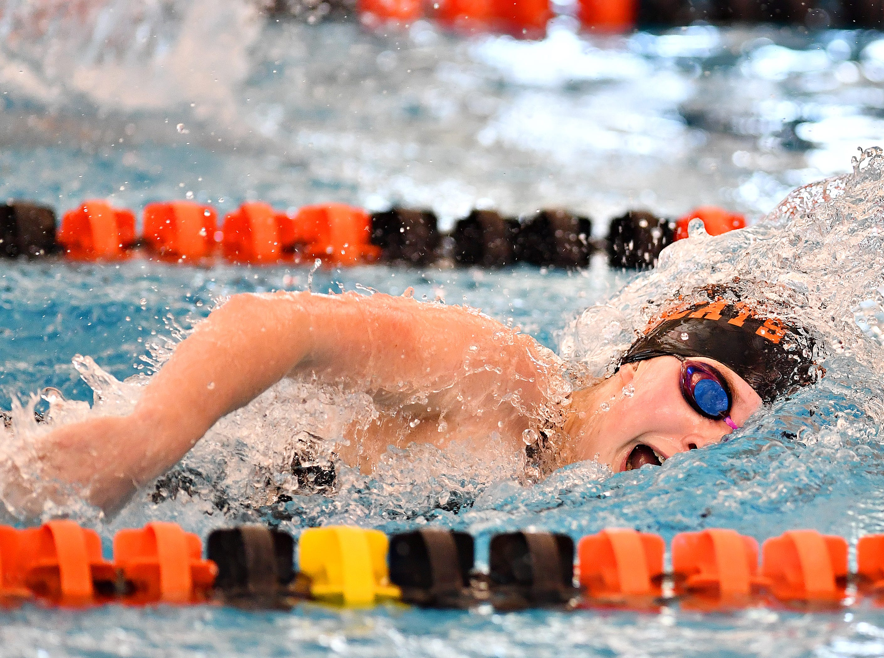 Northeastern's Madison E. Taylor competes in the 100 Yard Freestyle event during York-Adams League Swimming Championship at Central York High School in Springettsbury Township, Saturday, Feb. 9, 2019. Dawn J. Sagert photo