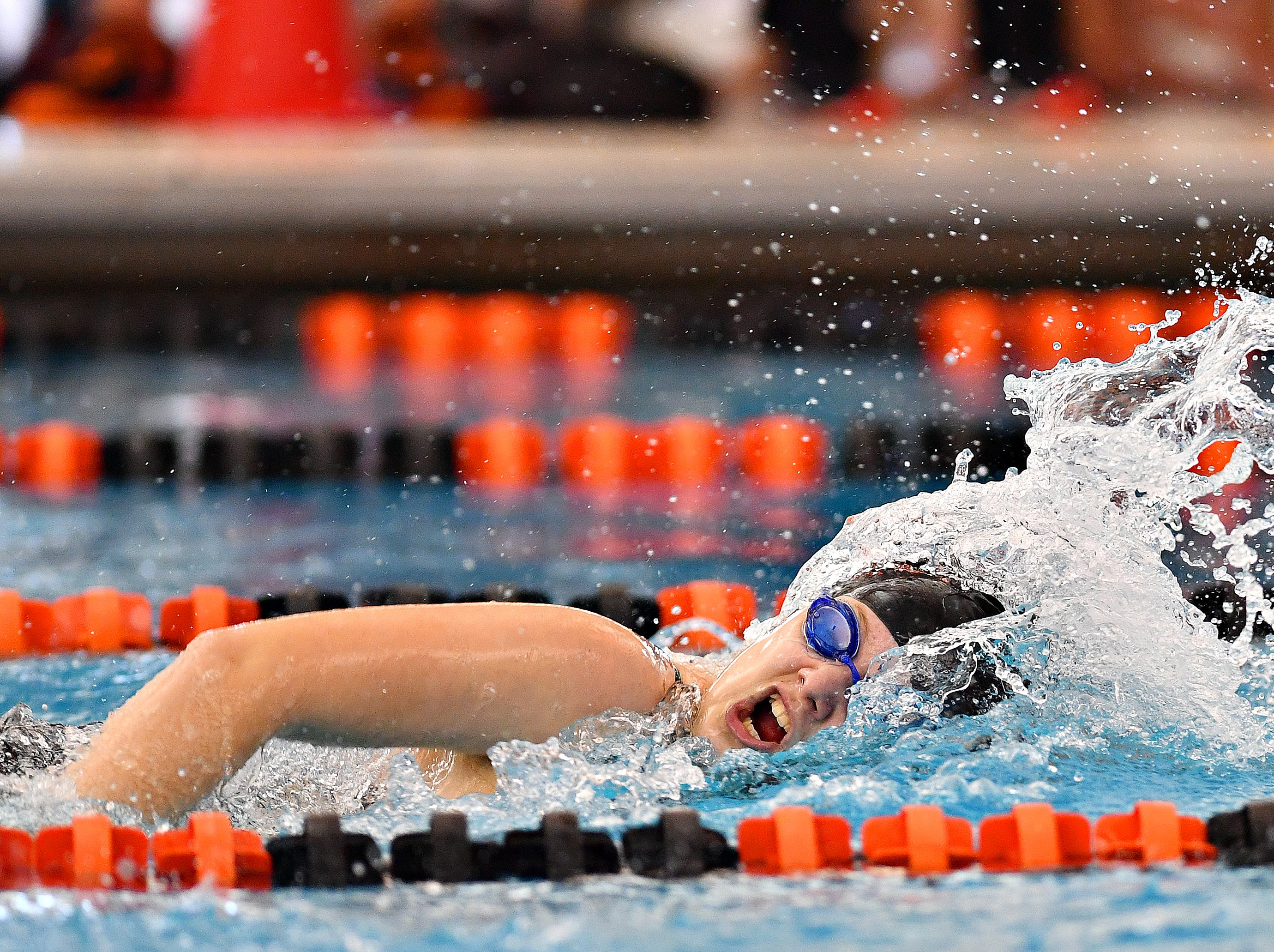 York Suburban's Cajsa Fryar swims the first leg of the 400 Yard Freestyle Relay event during York-Adams League Swimming Championship at Central York High School in Springettsbury Township, Saturday, Feb. 9, 2019. Dawn J. Sagert photo