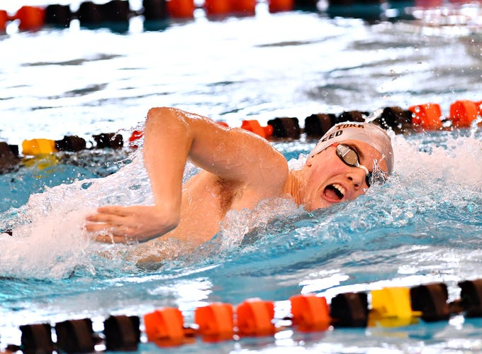 Central York's Cameron Speed wins the 500 Yard Freestyle event at 4:37.40 during York-Adams League Swimming Championship at Central York High School in Springettsbury Township, Saturday, Feb. 9, 2019. Dawn J. Sagert photo