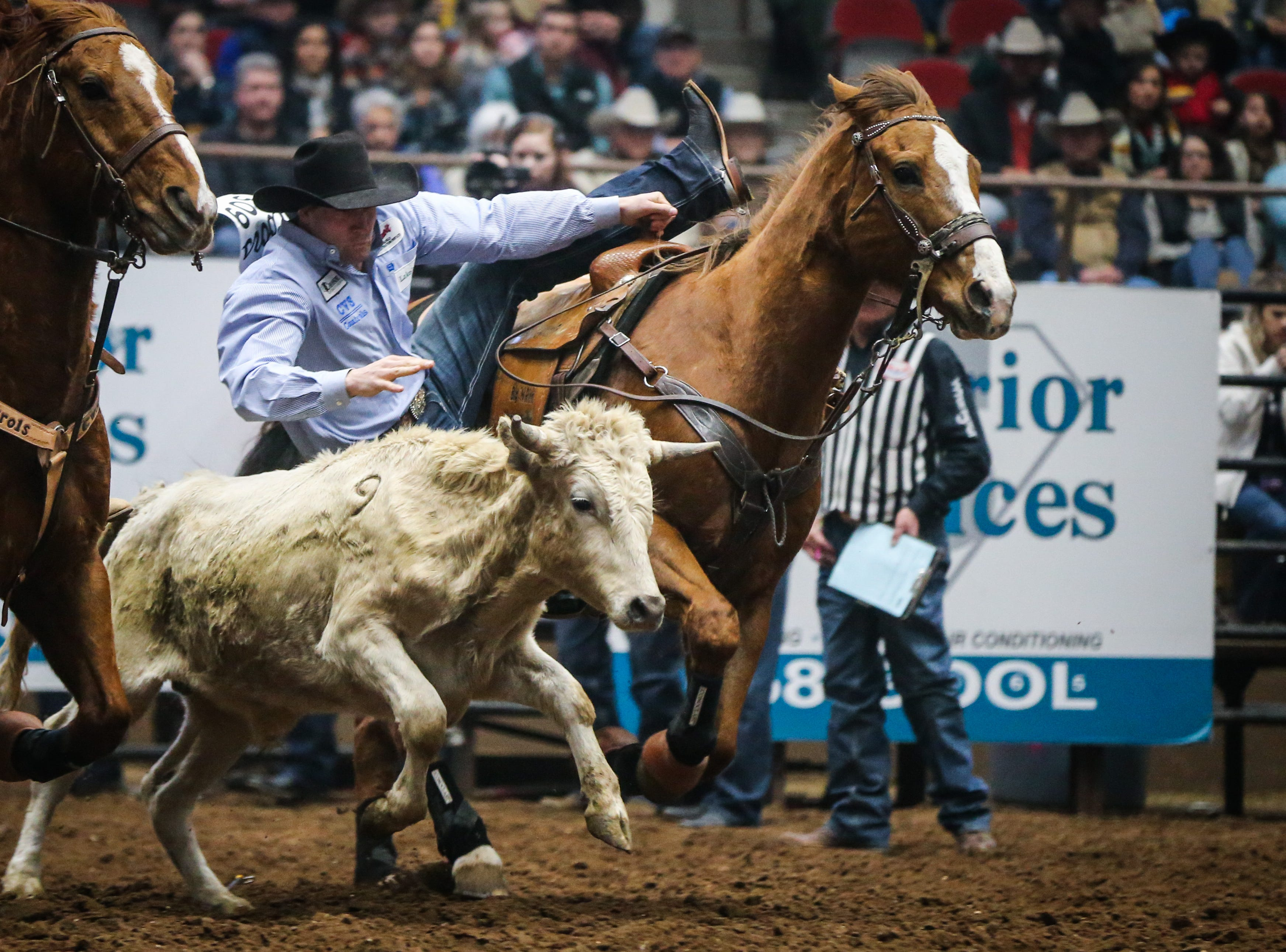 Scott Guenthner rides out to wrestle a steer during the San Angelo Stock Show & Rodeo matinee show Saturday, Feb. 9, 2019, at Foster Communications Coliseum.