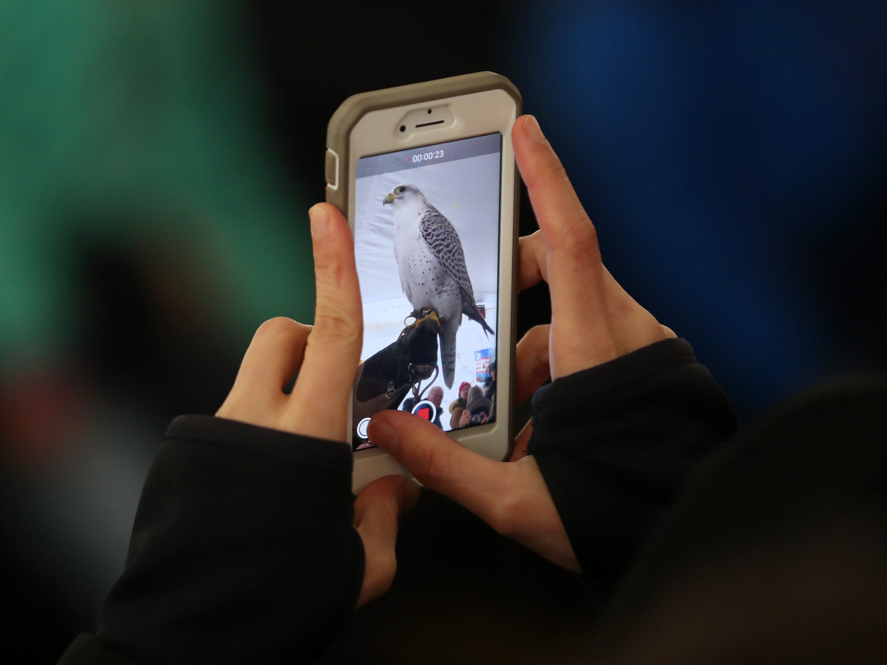 The annual Hudson River Eaglefest at Croton Point Park Feb. 9,  2019.