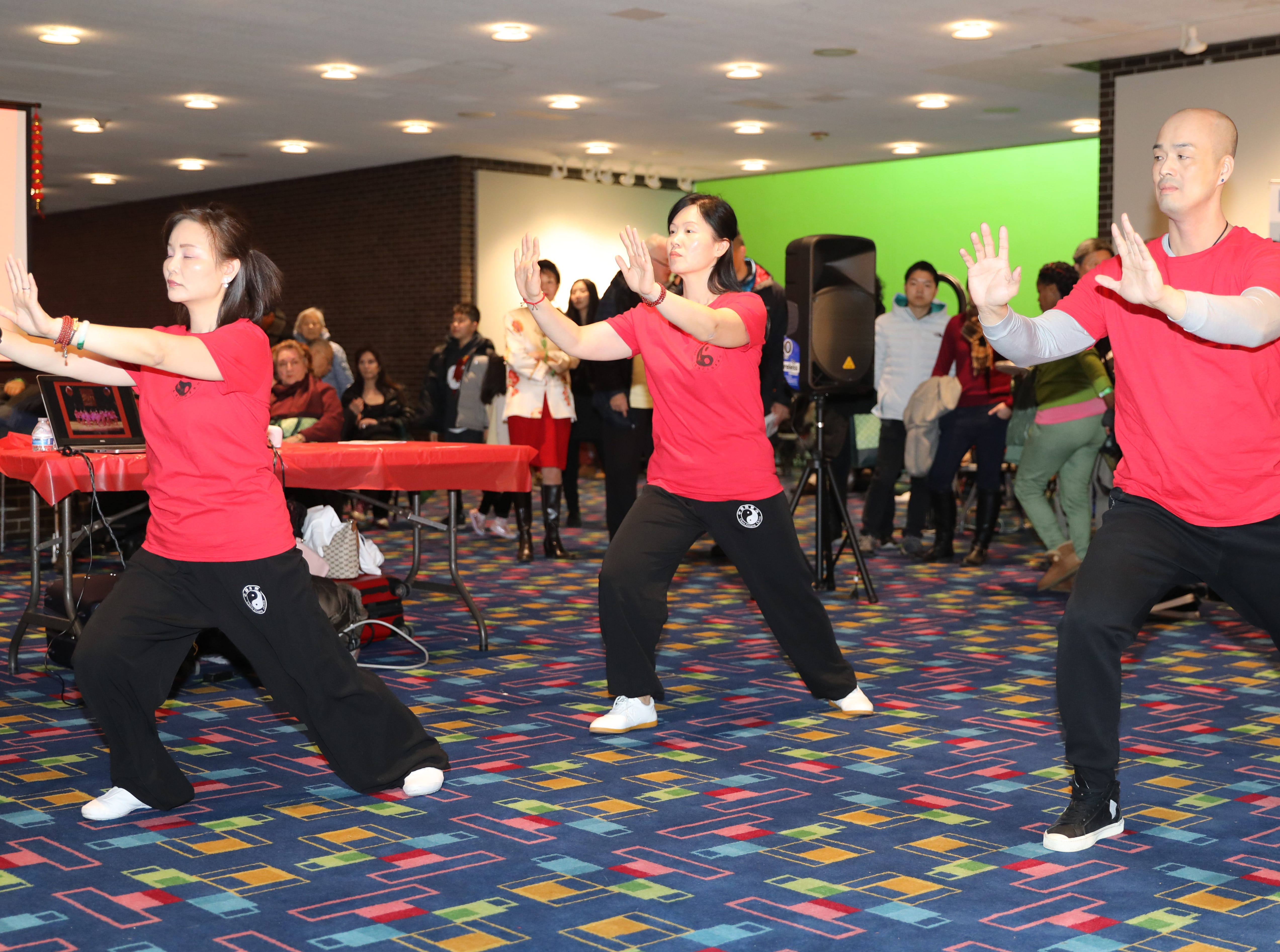 Members of the USA Chen Tai Chi Academy perform, during the 30th Chinese New Year Festival, the Year of the Pig, sponsored by WACA (Westchester Association of Chinese Americans), at The Performing Arts Center at Purchase College SUNY, Feb. 9, 2019.